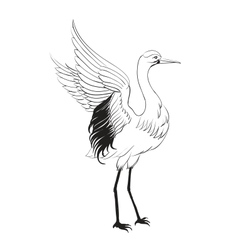 Heron isolated over white vector image