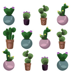 cactus set collection vector image