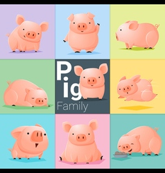 Set of Pig family vector image