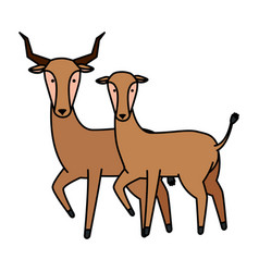 african antelopes couple wild characters vector image