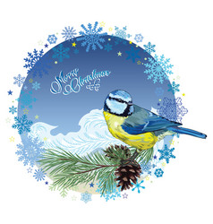 Christmas card titmouse sitting on pine branch vector