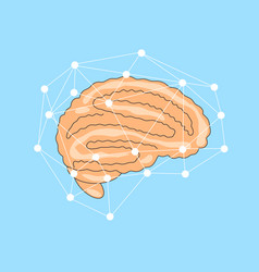 flat brain with network of vector image