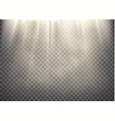 Light rays pattern vector