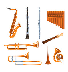 Musical wind instruments set saxophone clarinet vector