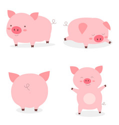 set fat little cute pigsyear pig vector image