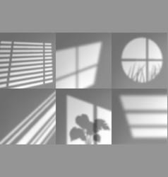Window shadows natural long shades sunrise vector