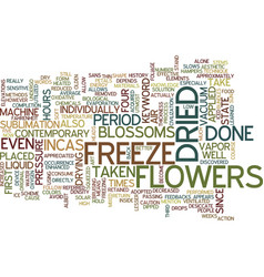 Freeze dried flowers text background word cloud vector