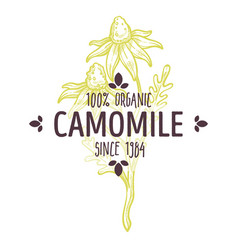 100 percent organic camomile label for all natural vector