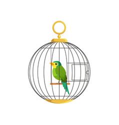 colorful little bird in cage vector image