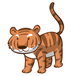 Cute tiger on white background vector