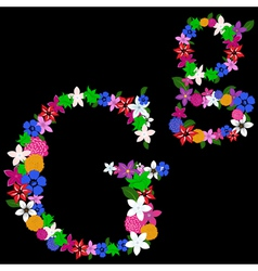 g letter vector image