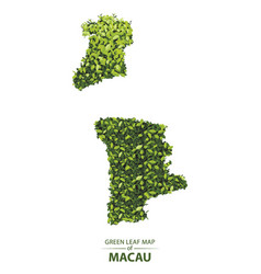 Green leaf map of macau of a forest vector