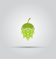 hop plant isolated colored icon vector image