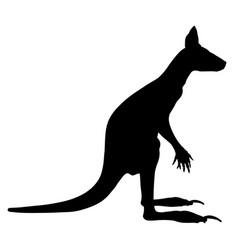 Kangaroo silhouette isolated on white background vector