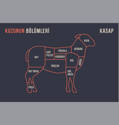 meat cuts poster butcher diagram and scheme vector image
