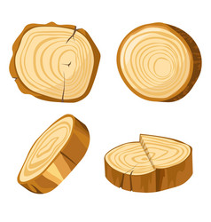 natural material forest log slice wood and wooden vector image