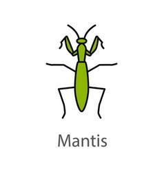 Praying mantis color icon vector