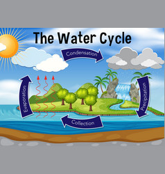 Science of water cycle vector