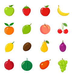 set of fruits in different style line flat vector image