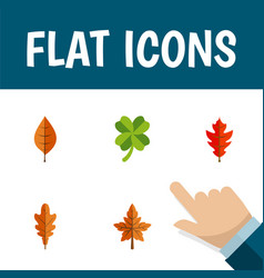 Flat icon foliage set of foliage leafage frond vector