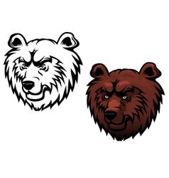wild kodiak bear vector image