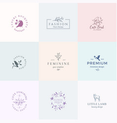 Abstract feminine signs symbols or logo vector