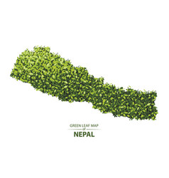 Green leaf map of nepal of a forest vector