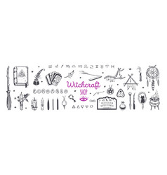 witchcraft magic shop for witches and wizards vector image