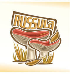 russula mushrooms vector image
