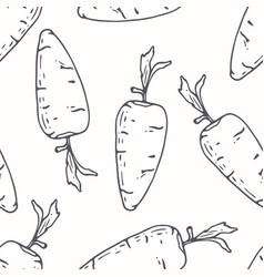 hand drawn outline seamless pattern with carrot vector image