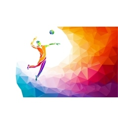 Creative silhouette of volleyball player Team vector image