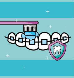 Orthodontics brushing tooth shield protection care vector