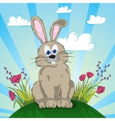 rabbit on flower meadow vector image
