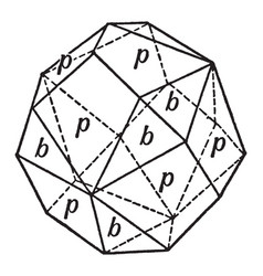 Rhombic dodecahedron combined with the trigonal vector
