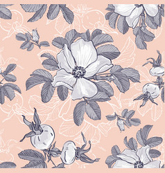Wild roses and rosehips pattern flower background vector