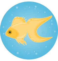 Gold fish in water with bubbles vector
