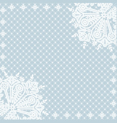 white lace background vector image
