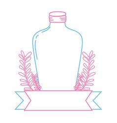 color line long mason jar with branches and ribbon vector image