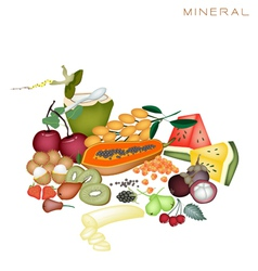 health and nutrition benefits mineral foods vector image