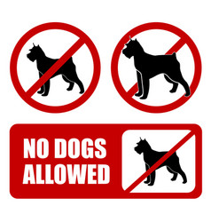 No dogs allowed dog prohibition sign - artwork vector