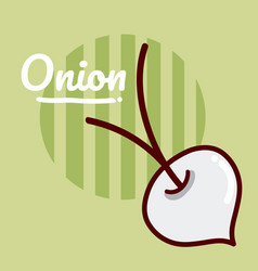 onion vegetable cartoon vector image