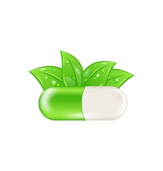 Pills and Herbs Isolated vector image