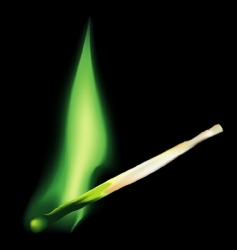 abstract match flame vector image vector image