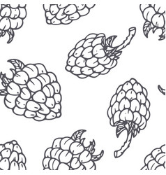 hand drawn outline seamless pattern with raspberry vector image vector image