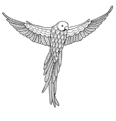 decorative bird on white vector image