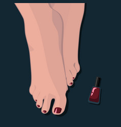 painted toenails pedicure burgundy nail polish vector image