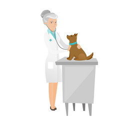 Senior caucasian veterinarian examining dog vector