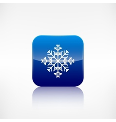Snowflake icon Application button vector image