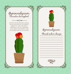 vintage label with gymnocalycium plant vector image
