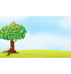 a tree and birds vector image vector image